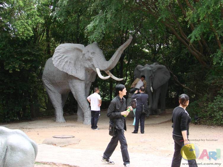 肯尼亚野生动物园: 非洲拥有辽阔的热带草原