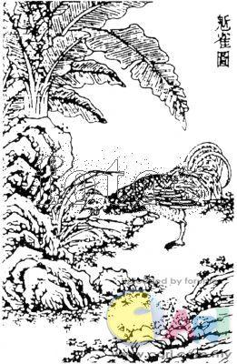 古装老鹰手绘图片