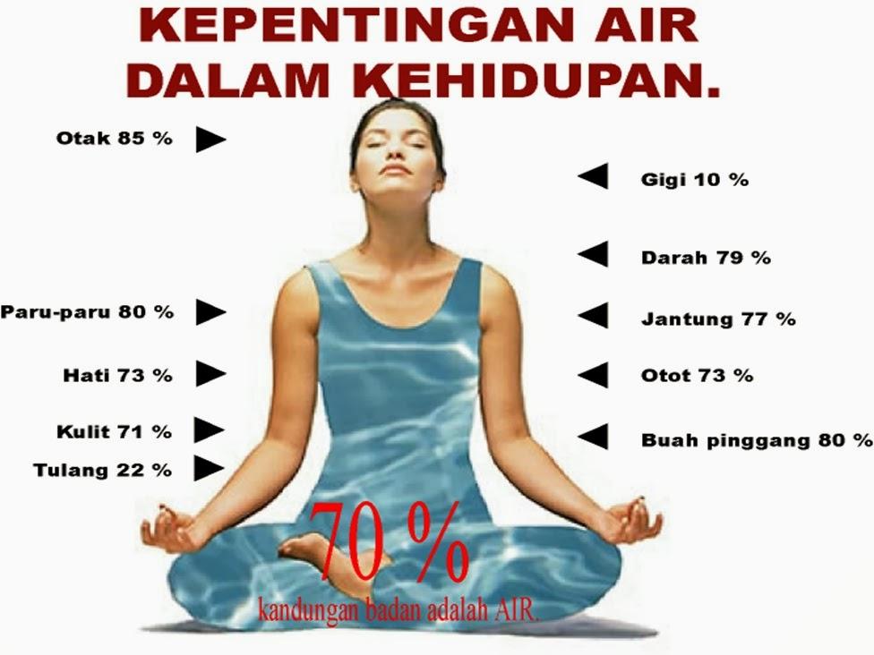 Image result for minum air ikut komposisi badan