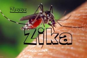 Virus Zika Penyerang Janin, Ibu Hamil Perlu Waspada