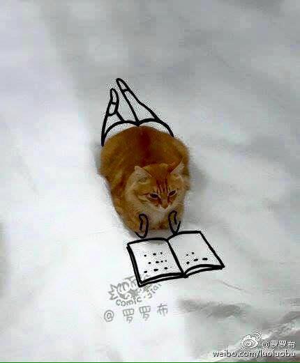 Bila Kucing Dijadikan Subjek Lukisan. Gambar Last Sempoi Ngat!