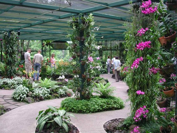 Image Result For Taman Orkid Kuala Lumpur