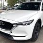 全新Mazda CX-5曝光! 有望下个月面市?