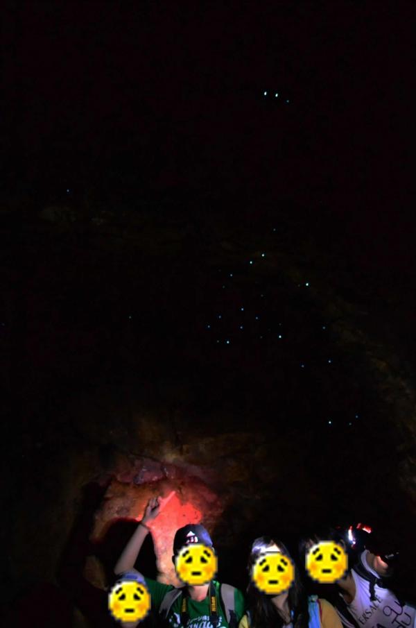 glow_worm_cave.jpg