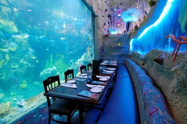 印度水族馆餐厅!4千种海底生物陪你用餐! 旅游资讯 乐乐游世界 佳礼资讯网