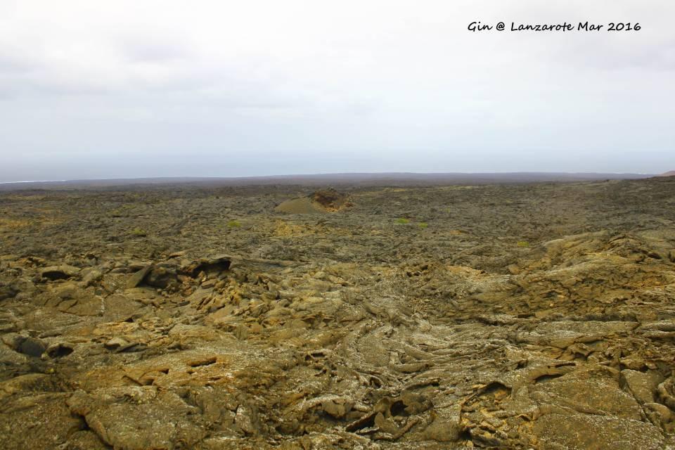 这里就火山岩,马路就建在火山岩之间。