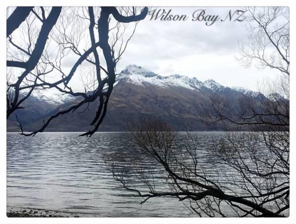 wilson bay