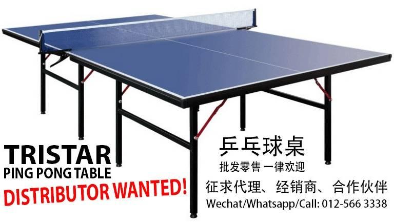 table tennis malaysia