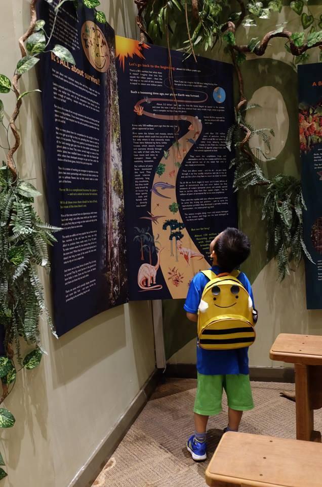 游览厅内了解Mulu公园