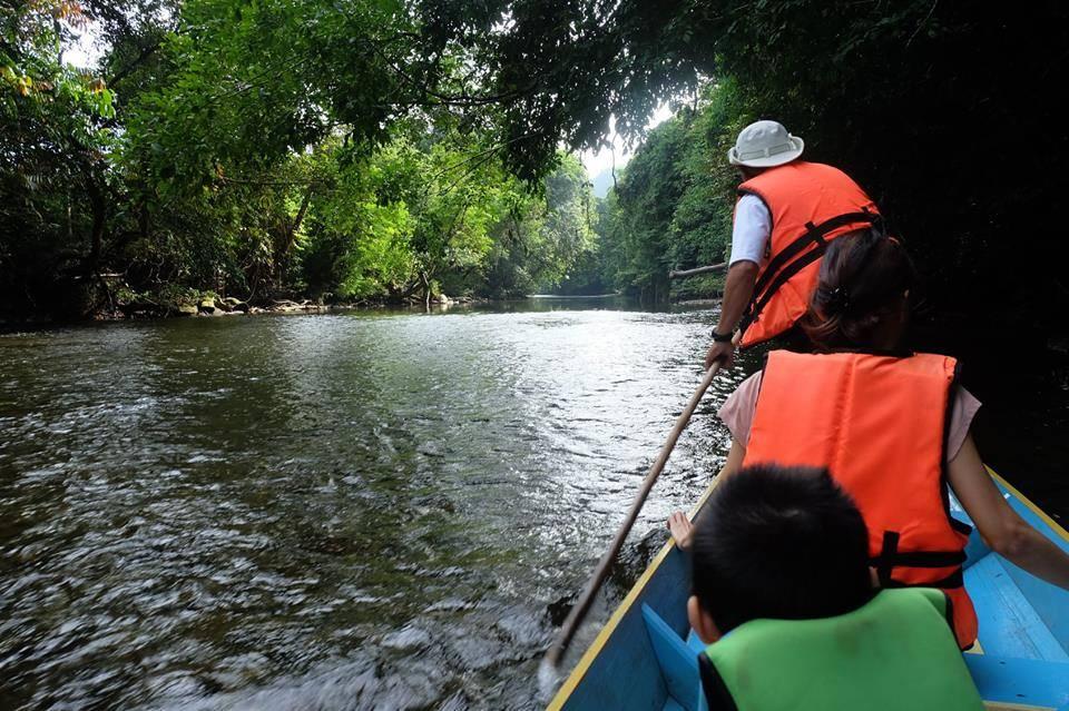 轻快的乘坐小艇在河上观赏古老的丛林