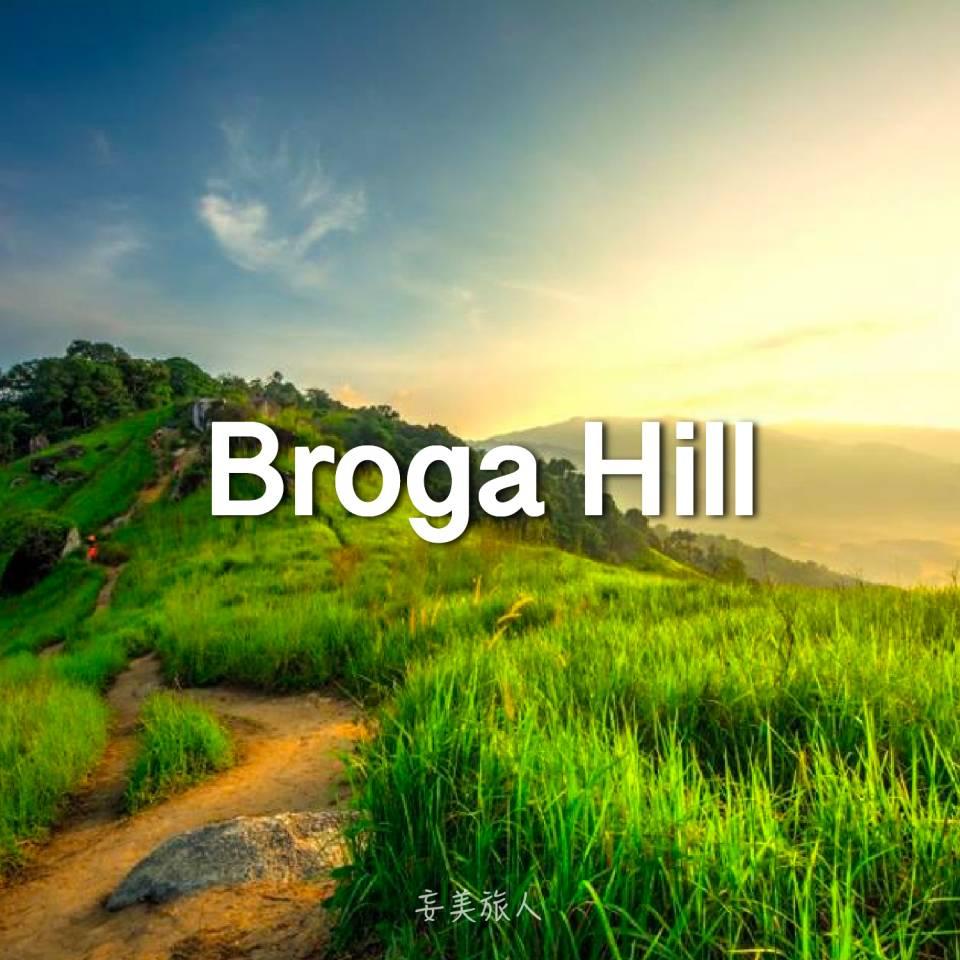 茅草山 Broga Hill