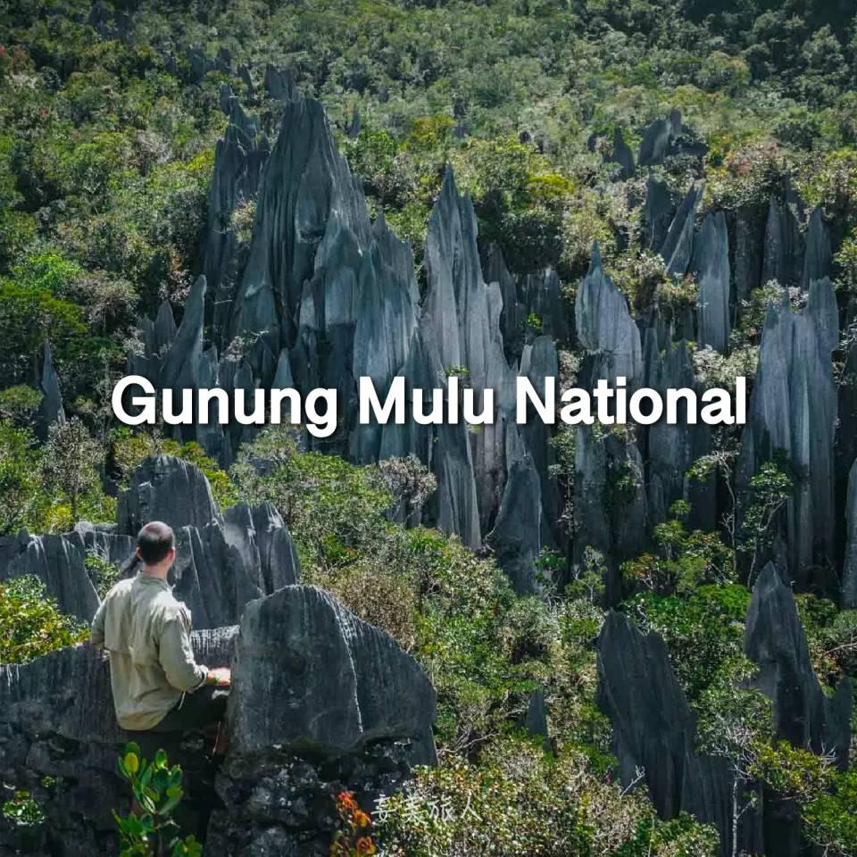 姆鲁山国家公园 Gunung Mulu National Park