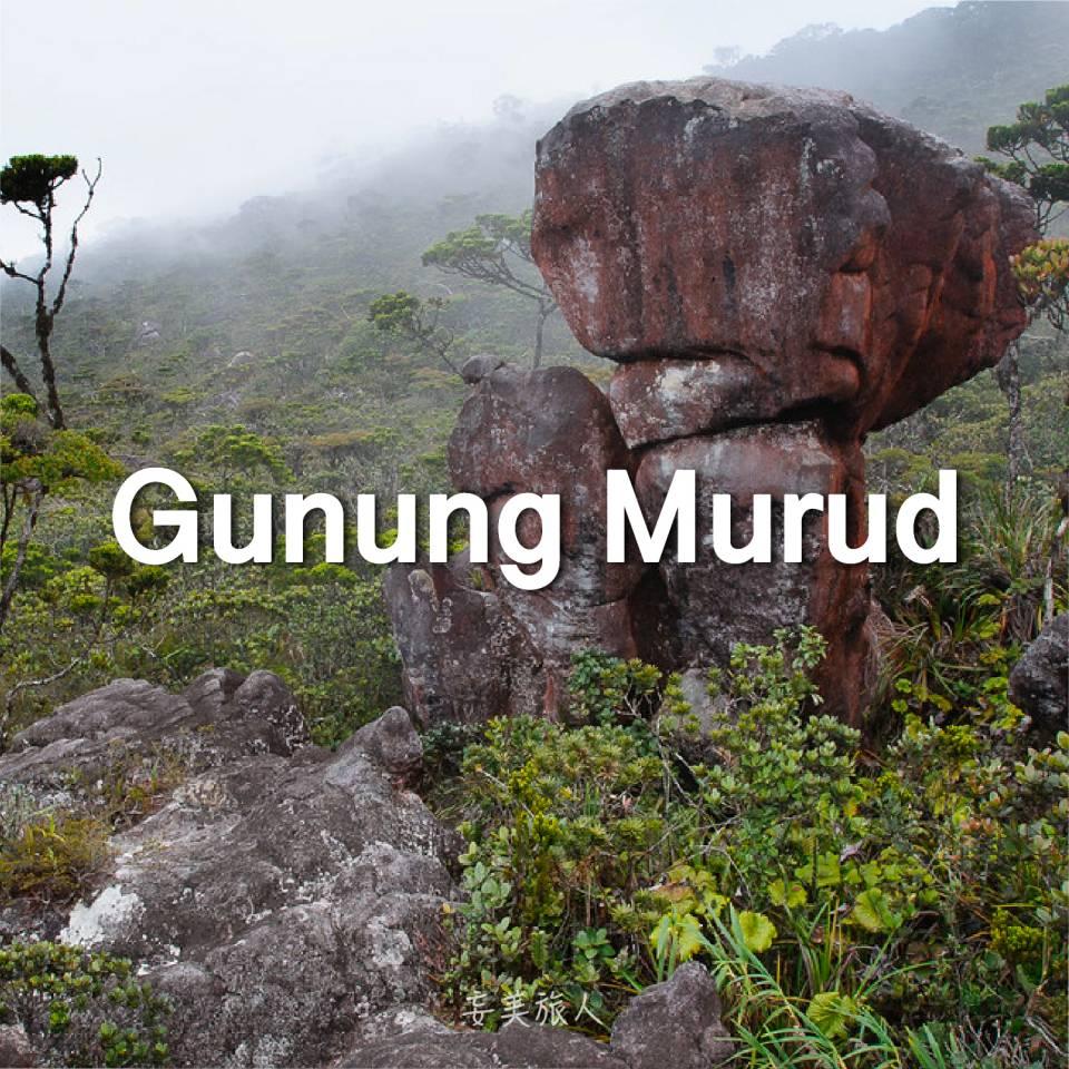 毛律山 Gunung Murud