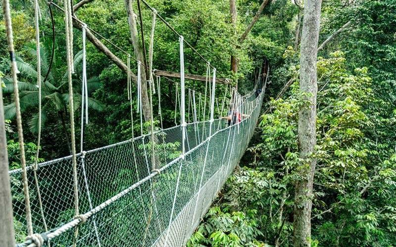 tailormade-and-group-tour-laos-highlight-taman-negara-national-park-1.jpg