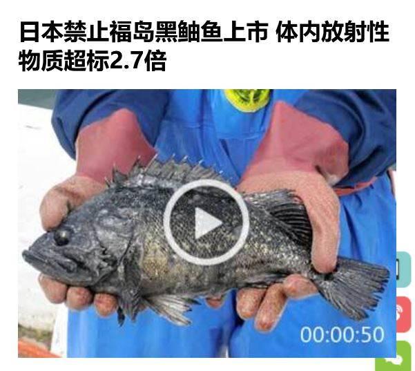 japan-fish-radioactive.JPG
