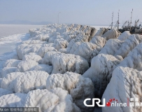 大連黃渤海北部部分海域封海 船隻被困碼頭。。。
