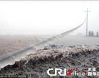 贵州遭受冰冻灾害 部分地区出现电线覆冰。。。