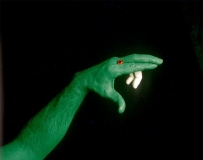 动动手指 创意无限