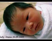 我的女王-Diana (06/01/2012加图)