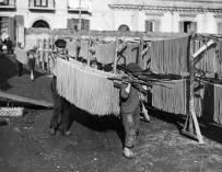 上个世纪20~50年代西西里岛上的意大利面条生产工艺