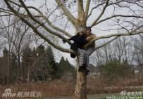 王力宏和老婆去爬树 庆祝结婚两周年