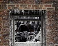 """美國費城起火公寓一夜變""""冰屋""""。。。"""