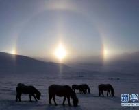內蒙古壩上草原出現日暈奇觀。。。