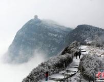 峨眉山银装素裹 云海雾凇美景尽收眼底。。。