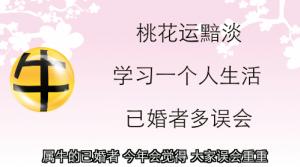 【牛- 感情】桃花黯淡 沟通最重要