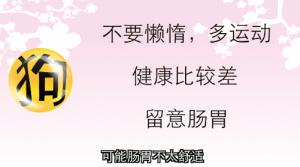 【狗- 健康】勤于运动 留意肠胃病