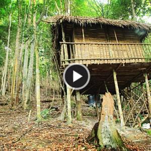 《柔佛古来》雨林树屋  回归自然