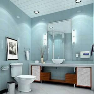厕所天然除臭3宝