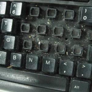 键盘鼠标比厕所脏数万倍!