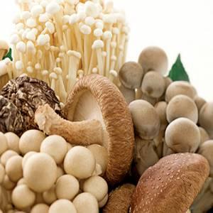 营养食物新趋势 4大类营养食物让你健康又环保!