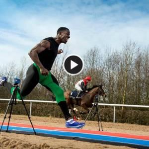 短跑健将与马斗100米 谁胜谁负?