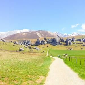 自驾游纽西兰  看更多或许跟团看不到的私房景点!