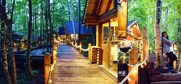 遨游北海道,如诗如画的丛林精灵屋最叫人着迷!
