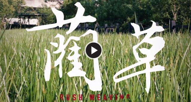 编织出属于夏天的沁凉与清香—— 台湾蔺草协会主席黄增桢