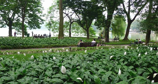独自游越南河内、沙坝:与你分享相关旅游资讯!