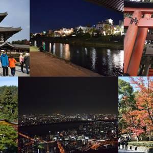 7天穷游日本关西 收获满满的一个人旅行!