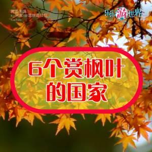 6个赏枫叶的国家
