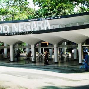 国家动物园急需观光客!奶茶店开在动物园就能吸引民众吗?