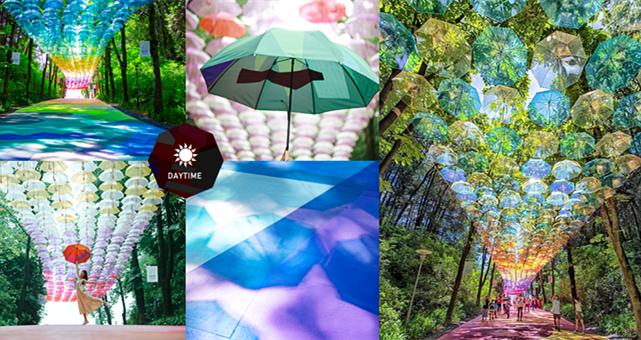 【旅游情报】走入日本玻璃伞秘境,让你的雨天不再惆怅……
