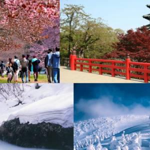 """让我们一起去""""日本东北""""欣赏雪景和樱花吧!"""