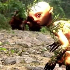 眼前忽然出现非常小的人形生物,飞速窜向树干消失不见!老人家:父亲说那是未成年的山精!