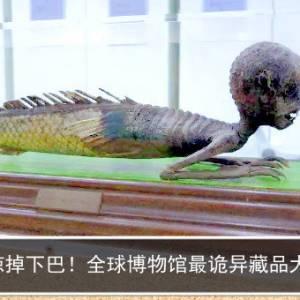惊掉下巴!全球博物馆最诡异藏品大赏