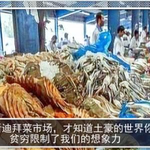 看看迪拜菜市场,才知道土豪的世界你不懂,贫穷限制了我们的想象力