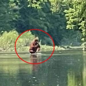 「大脚怪」抱孩渡河!他闯森林惊见神秘身影 5秒目击片疯传