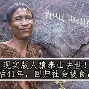 现实版人猿泰山去世!丛林生活41年,回归社会被食品害死?
