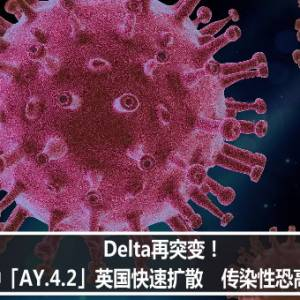 Delta再突变!新变种「AY.4.2」英国快速扩散 传染性恐高出10%